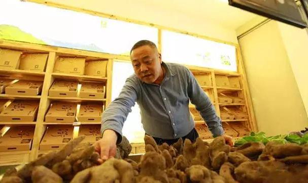 柯城区农合联农产品购物中心的早田优秀农产品2.jpg