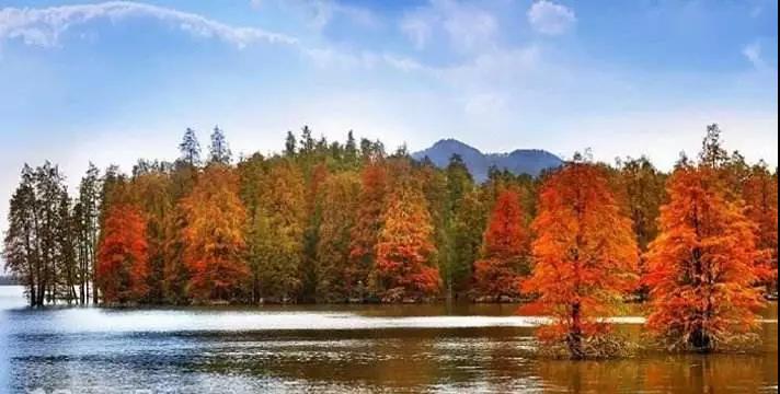 青山湖国家森林公园.jpg
