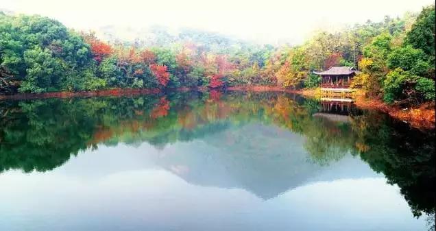 杭州半山国家森林公园.jpg