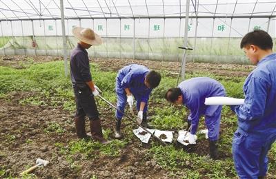 台州市环境监测人员进行土壤污染修复工作.jpg