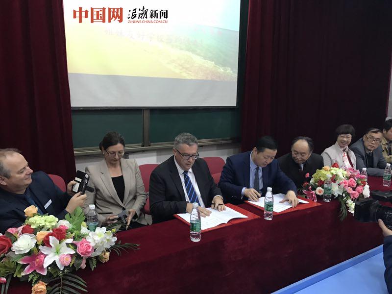 """杭州新明半岛英才学校:""""国际理解教育""""走出新路"""