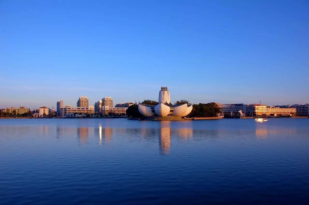 新埭镇被推到了舞台中央,一个跨省(市)合作建设的科技城,将上海和平湖图片