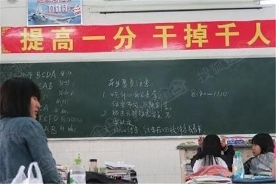 成立专案组_浙江成立专案组调查高考英语\