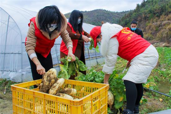 爱心蔬菜、爱心鱼…… 淳安农业